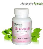 Bhumyamlaki